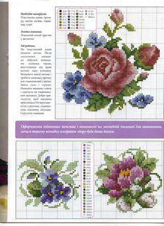 Floral CSPf