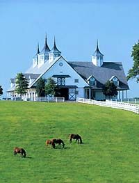 Kentucky bluegrass country and an amazing barn