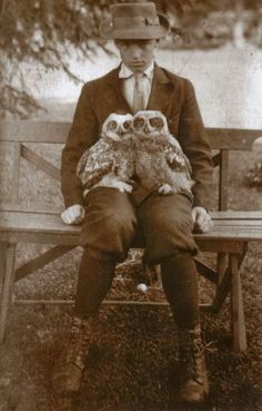 Boy with pet owls, circa 1911 - the year my Grandmother was born, 11/11/11.