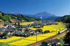 Seeing Japan by train