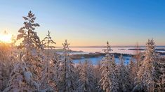 Nurmeksen Kohtavaaran luonto- ja historiapolku avaa maiseman Pieliselle – Ikiaikaista tornipolkua pidetään yllä talkooväen voimin Finland, Culture, Outdoor, Historia, Outdoors, Outdoor Games, The Great Outdoors