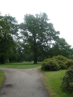 Schloß und Park Altdöbern - der schon restaurierte Teil der Anlage