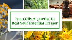 See the natural essential oil remedies to stop shaking. We've also included popular proven herbs and lifestyle changes that can do you wonders. remedies for anxiety remedies for sleep remedies high blood pressure remedies simple remedies sinus infection Helichrysum Essential Oil, Doterra Essential Oils, Natural Essential Oils, Essential Oil Blends, Yl Oils, Natural Oils, Young Living Oils, Young Living Essential Oils, Lavender Oil For Sleep