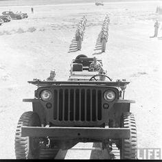 Jeep Ford GPA - Jeep Ford GPW - Jeep Willys MA - Jeep Willys MB - Jeep Hotchkiss M201, jeep Delahaye: photo de jeep
