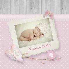 Geboortekaartjes - fotokaart romantisch vogel takje vm14a