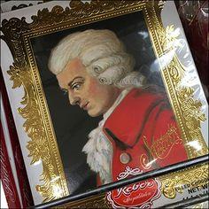 Mozart Portrait Packaging Shelf-Edge Fencing Metro Shelving, Wire Shelving, Store Fixtures, Fencing, Shelf, Packaging, Retail, Candy, Portrait