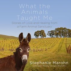 What the Animals Taught Me: Stories of Love and Healing from a Farm Animal Sanctuary  What the Animals Taught Me is the story of how a woman came upon farm animals that needed rescuing and what she learned from them as they gradually changed her home in Sonoma County California into an animal sanctuary.  Wishing to escape the urban rat race freelance writer and editor Stephanie Marohn moved to rural Northern California in 1993. In return for reduced rent she fed and cared for two horses. Life wa The Animals, Farm Animals, Wild Animal Sanctuary Colorado, Animal Consciousness, Wild Animal Rescue, Dog Stories, Little Pigs, Animal Rights, Natural World