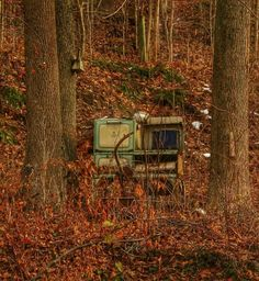 """Old stove abandoned in the woods.  Makes me think of a child playing house & could've used this for the """"kitchen""""."""