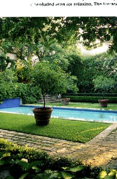 Idea for the pool...I'm really thinking about antique brick around the circumference of the pool