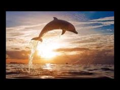 Abraham Hicks - Desire - Strong desire means a lot of non physical energy involved - YouTube