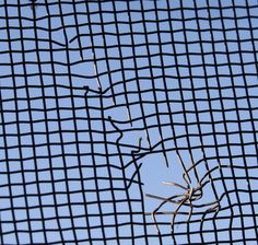 How to Repair Small Holes in Window Screens #stepbystep