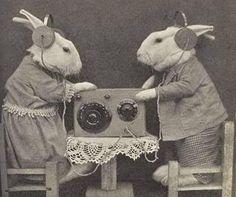 Radio C calling Radio M