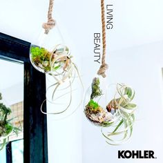 kohler_indiaPlants in your bathroom are not only a great way to add a touch of style and luxury but also a fantastic way to keep the air clean and fresh! Classic Bathroom, Bathroom Essentials, Plant Hanger, Sink, Towel, Sunday, Calm, Cleaning, Fresh