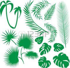 feuille de palmier:   Set de feuilles vertes
