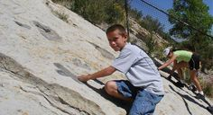 Colorado's dinosaur-rich soil means that there are fossils everywhere! At Dinosaur Ridge, just outside of Denver, kids can see where some of the largest mammals that ever lived roamed the earth.