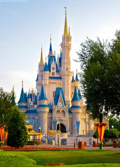 DISNEY WORLD - The happiest place on earth