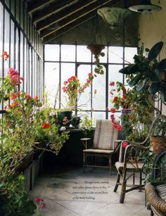 1000 images about greenhouses sheds on pinterest for Bhg greenhouse