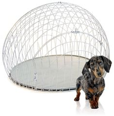 Modern Wire Dog Crate and Crate Cover from GO!PetDesign