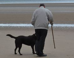 This is my dad Ray last year with our dog Milo, also Dad's best friend.  Tonight he walked home in his own (a few hundred yards) two months after having a stroke which he hasn't been able to do for quite some time. From Debi W