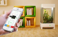 niwa urban garden is smartphone-controlled for optimal cultivation