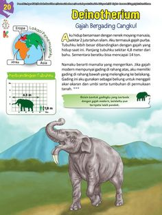 Buku Pintar Ensiklopedia Dinosaurus dan Binatang Purba Katabaca.com Animal Facts, Jurassic World, Dinosaurs, Studying, Bedtime, Dragon Ball, Knowledge, Science, Horses