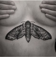 Moth Tattoo SPHYNX tattoo By Noksi Tattoo