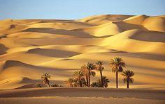 10 Maiores Desertos do Mundo (km2)