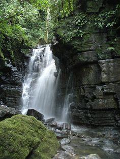 Tena, Ecuador. My introduction to the Amazon rain-forest.