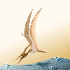 Pteranodon (longiceps), Late Cretaceous (86 - 84.5 Ma), Discovered by Marsh, 1876; Artwork by TopGon on DeviantArt