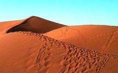 Désert - Mhamid Vous aussi laissez vos traces de pas dans le désert! Le vent du soir effacera toute marque de passage. Traversée de palmeraies et immersion dans une ambiance saharienne.