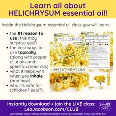 Essential Oil Safety, Essential Oils, Helichrysum Essential Oil, Chest Rub, Hot Flashes, Carrier Oils, Recipe Collection, Animals For Kids, Join