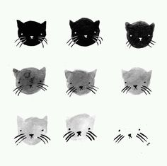 Meow ? on We Heart It