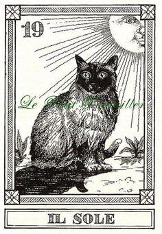 Osvaldo Menegazzi Cat Tarot Fortune Telling Feline Cards