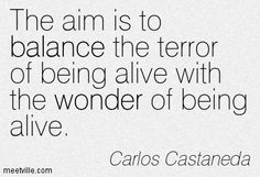 The aim is to balance the terror of being alive with the wonder of being alive.