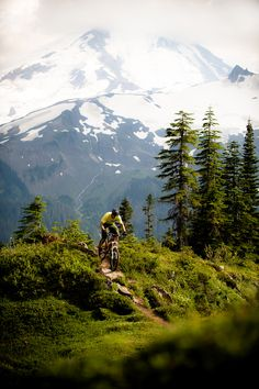 Sweetness!  Jiving in the alpine