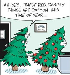 Funny christmas wishes hilarious god 32 ideas for 2019 Christmas Comics, Christmas Cartoons, A Christmas Story, Christmas Humor, Christmas Fun, Holiday Fun, Xmas Holidays, Holiday Images, Winter Images