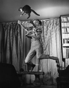 "Philippe Halsman, ""Jean Seberg with Cat,"" vintage silver print, 1959 #jumpology"