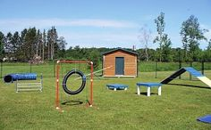 dog agility course size - Google Search