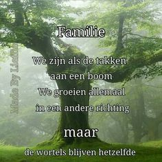 Familie Best Quotes, Love Quotes, Inspirational Quotes, Popular Quotes, Dutch Phrases, Life Experience Quotes, Dutch Quotes, Good Thoughts, Wall Quotes