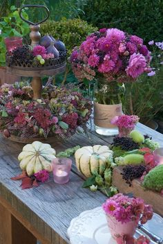Autumn flowers. This color pallet is a nice change for the season instead of oranges predominating.