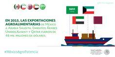 En el 2015, las exportaciones agroalimentarias de México a Arabia Saudita, Emiratos Árabes Unidos, Kuwait y Qatar fueron de 46 mil millones de dólares. SAGARPA SAGARPAMX #MéxicoAgroPotencia
