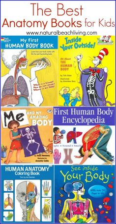 The Best Anatomy books and learning aids for kids, hands on learning, All About Me theme, Anatomy for Kids, Great Science and Health Education Books & Tools education The Best Anatomy Books & Learning Aids for Kids - Natural Beach Living Hands On Learning, Learning Activities, Kids Learning, Activities For Kids, Health Activities, Learning Tools, Steam Activities, Science Books, Science For Kids