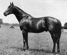 Omaha was the third American Triple Crown winner in the year 1935.
