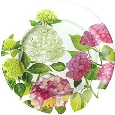 """Amazon.com: Custom & Unique {8"""" Inch} 16 Count Multi-Pack Set of Medium Round Circle Disposable Paper Plates w/ Nature's Beauty Geranium Floral Bouquet Summertime Tea Party Decor """"Pink, Green & White Colored"""": Kitchen & Dining"""