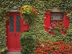 Ivy covered cottage.   ..rh