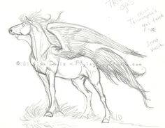 Old Sketches – Drawing Unicorns and Pegasus Before they were Cool - These are all pen and ink and pencil this is ink then tweaked with Corel Paint Shop draft for embro - Fantasy Drawings, Horse Drawings, Realistic Drawings, Animal Drawings, Art Drawings, Animal Sketches, Drawing Sketches, Pegasus, Amazing Animals