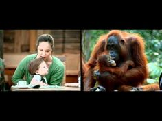 Amazing commercial. WWF