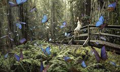 """Photographer Chris Crisman recently submitted this composite image, titled """"Butterfly Girl,"""" to a prestigious international photo competition. It has been widely published by news outlets, but has received mixed reactions, mainly regarding the question, """"should it be considered a photograph?"""" Read more here: http://www.petapixel.com/2012/12/09/photoshop-in-photography-what-defines-a-photograph/"""