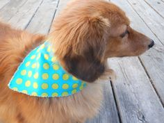 Small Medium Dog Bandana  Polka Dots by Joanna1966 on Etsy,