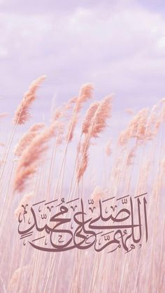 Islamic Wallpaper Iphone, Quran Wallpaper, Islamic Quotes Wallpaper, Wallpaper Backgrounds, Islamic Images, Islamic Pictures, Islamic Qoutes, Attractive Background, Love In Islam